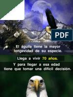 Aguila Quality Improvement Español Música.ppt
