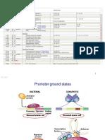 BIO Genetics and Epigenetics 1