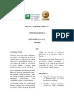 Práctica de Laboratorio 2 Diversidad Celular (1)