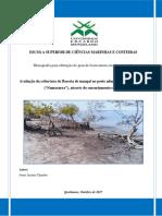 """Avaliação da cobertura de floresta de mangal no posto administrativo de Macuse  (""""Namacurra""""), através do sensoriamento remoto"""