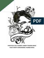 Portfólio de Vagner Vainer Teixeira Braz