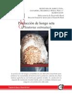 Producción de Hongo Seta.pdf
