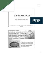 12. ciclo cellulare.pdf