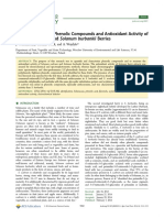 Characterization of Phenolic Compounds an Antioxidant Activity