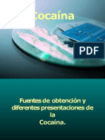 cocana-110621075239-phpapp02