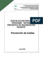 8.-Guia Prevencion de Caidas
