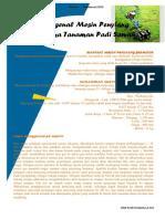 Mengenal Mesin Penyiang Gulma Tanaman Padi Sawah