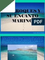 Carlos Michel Fumero - Los Roques y Su Encanto Marino