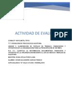 DESCRIPCION DE LOS PAPELES DE TRABAJO