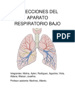 Infecciones Del Aparato Respiratorio Bajo (Modific