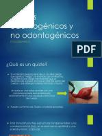 Quistes odontogenicos y no odontogenicos