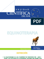 Equinoterapia Introduccion - UCSUR
