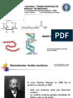 Clase 2. Bases Químicas de La Vida Ácidos Nucleicos 2018-I