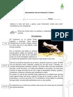 Ficha Informativo 1