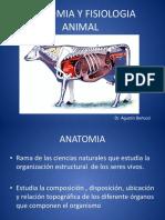 Anatomia y Fisiologia 0113 0003