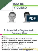 Semiologia Cabeza y Cuello