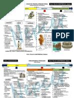 Ficha i Comunidadprimitivaenelmundoylosandes 130720195723 Phpapp01