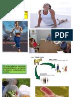 DETERIORO DE LOS ALIMENTOS.pptx