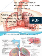 enfermedadessistemarespiratorioppt-140314215018-phpapp01
