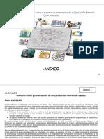 Anexos Manual Version Final 2010-2011 (1)