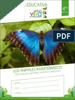 4° invertebrados