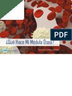 Blood Marrow Booklet Spanish 11.18.2016