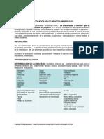 Calificación Impacto Ambiental (1)