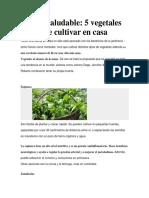 Huerta Saludable INFORMACION