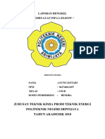 laporan pipa ayuni.docx