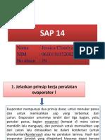 SAP 14