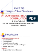 SteelDesign Composite Fu New