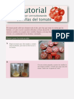 El Tomate Puede Cultivarse Durante Todo El Año