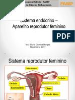 Sistema Endócrino – Aparelho Reprodutor