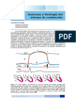 Capitulo_1_Anatomia_y_Fisiologia.pdf