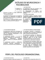 Perfil Del Psicólogo de Neurociencia y Organizacional