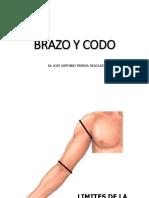 Sem3-1 BRAZO Y CODO