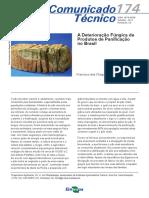 Deterioração Fúngica de Produtos de Panificação No Brasil