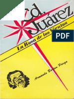 144 Borjon - CD Juarez Rosa