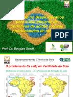 o Calcario No Brasil - Desafios Para o Uso Eficiente de Corretivos de Acidez e Novas Oportunidades de Mercado - Prod. Dr. Douglas Guelfi