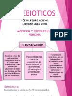 Adriana Ortiz Prebioticos