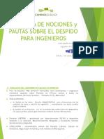 Juan Ramón Ruiz Lucio_Ponencia de Nociones y Pautas sobre el Despido para Ingenieros.pdf