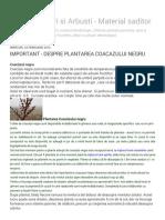 Pomi Fructiferi Si Arbusti - Material Saditor_ Important - Despre Plantarea Coacazului Negru