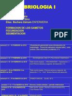 conferencia1deembrilogiailizette2018okpublicar-180215231433.pdf