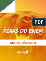 Apostila Feras do Enem - Prof. Paulo Jubilut