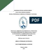 MIRANDA_CELITO_SUMINISTRO_NUTRIENTES.pdf