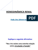 Hemodinamica Renal