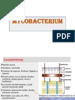 MYCOBACTERIUM-2