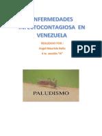 Definicion Del Paludismo