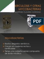 Tuberculosis Patologia