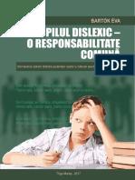 Responsabilitate-comuna.pdf